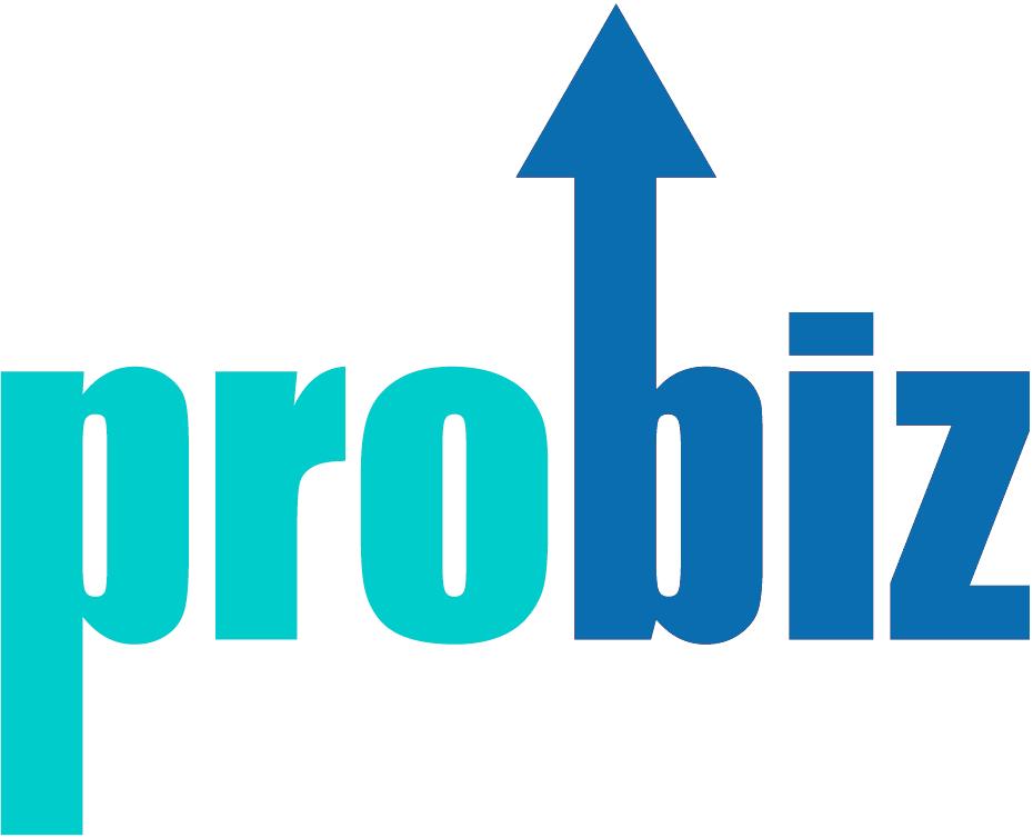 Pro Biz Services